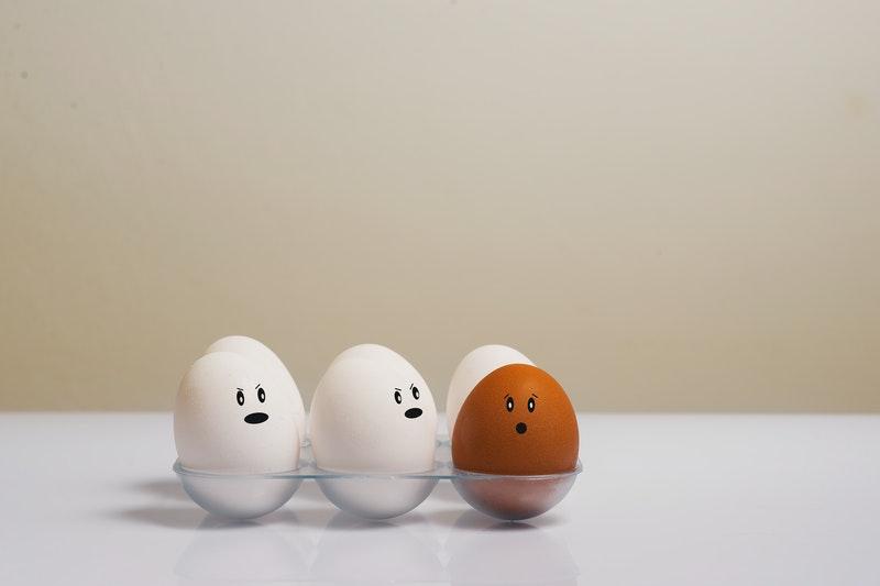 Cara Membuat Tempat Telur Ayam Paling Sederhana